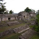 Blick vom Palast des Fürsten in Palenque Mexiko