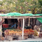 Obststand in Tehuantepec